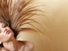 Hair Dresser (3)