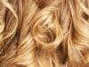 Hair Dresser (7)
